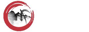 Cedric Delsoy Shiatsu Logo